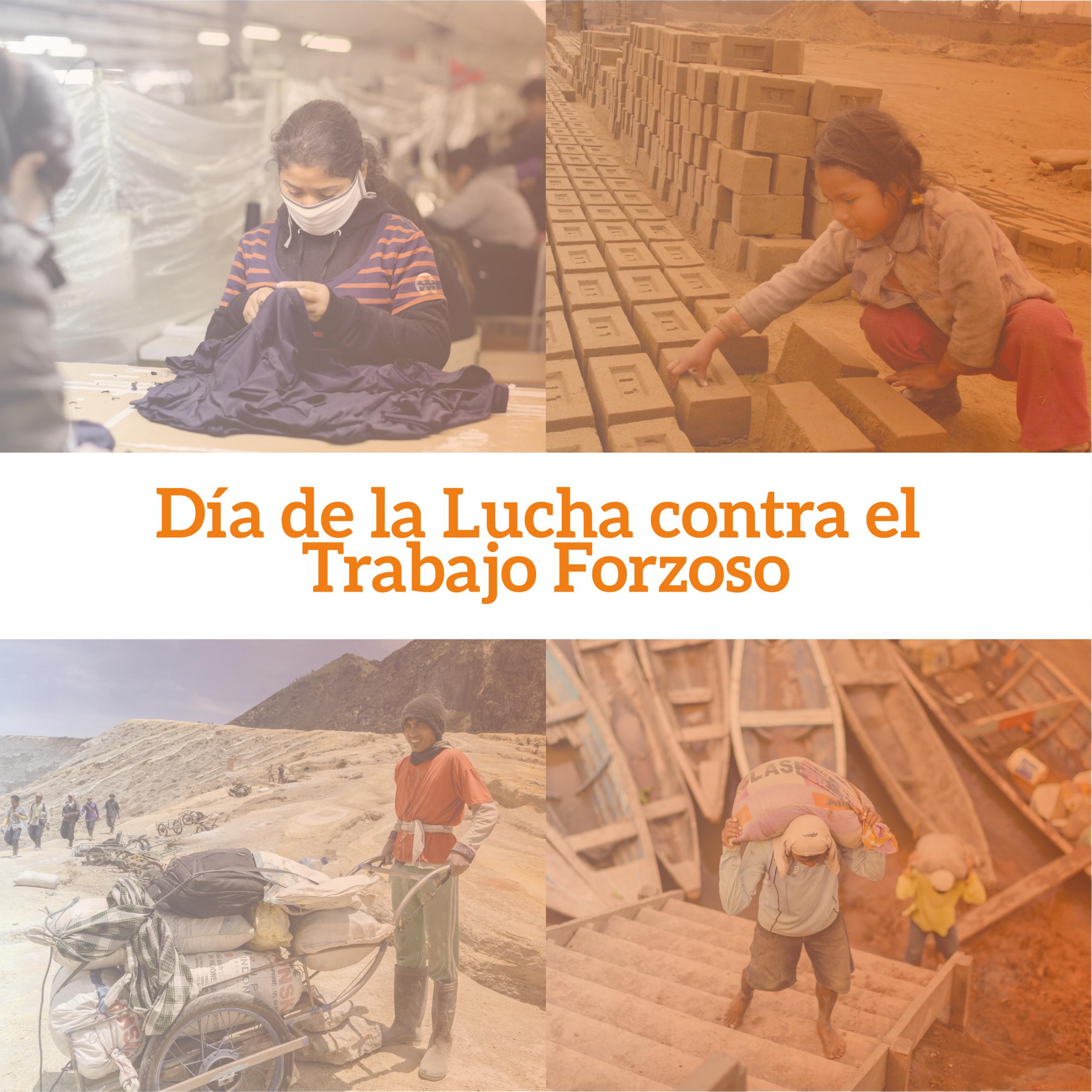 Comisiones Regionales Especializadas en la Lucha contra el Trabajo Forzoso y CHS Alternativo se unen para lanzar una campaña informativa y de prevención del delito de trabajo forzoso en Cusco y Loreto